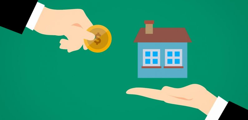 Investing During An Inexperienced Home Pays Dividends In 2019